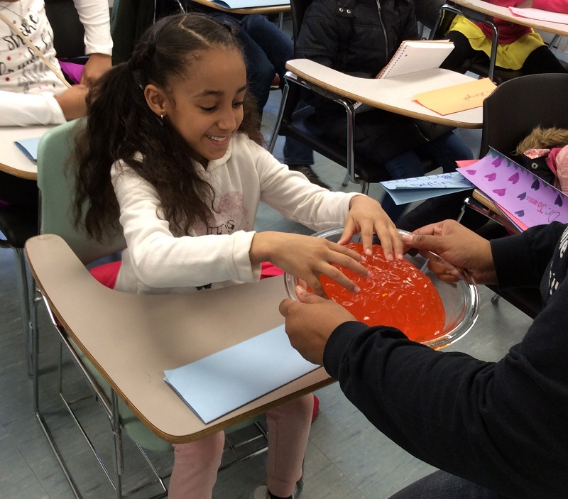 Olivia Matthews (left) examines a brain made from a Jell-O mold, a popular prop used by Dr. Inniss. (Photo courtesy of April Inniss)