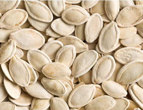 Pumpkin seeds. (jirkaejc, Envato Elements)